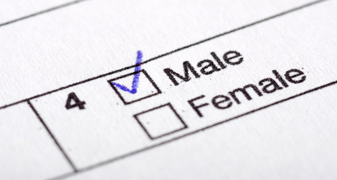 NYC Wants to Make It Easier to Change Birth Certificate Gender