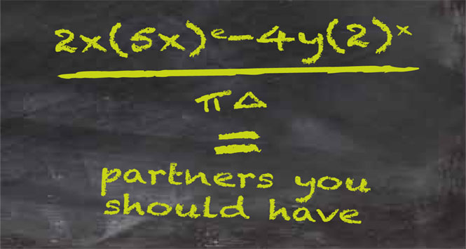 Sexual Partners Equation